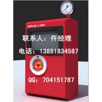 ZSPM-80/1.2-DX消防末端试水装置,价格  厂家 图片
