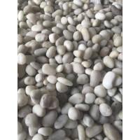 天然鹅卵石价格 大直径鹅卵石价格