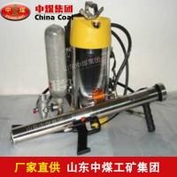 高压脉冲灭火装置,脉冲灭火装置厂家 ZHONGMEI