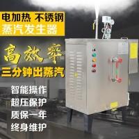 广东环保电加热油污清洗蒸汽发生器
