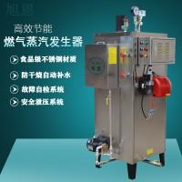 旭恩9-108kw立式燃气蒸汽发生器供应商