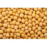 埃塞俄比亚大豆可以进口吗?埃塞大豆进口清关流程都在这里了